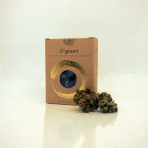 cannabis-legale-verona-o-green-sexy-shop-verona-la-passione